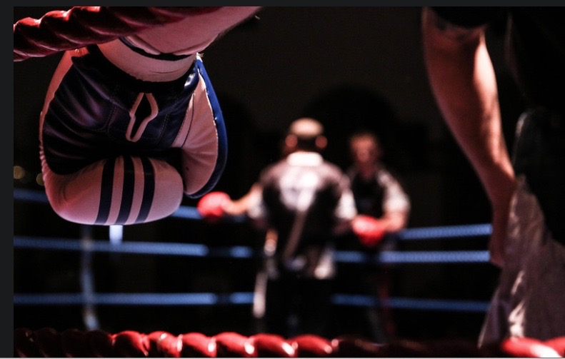 A fighter's view...